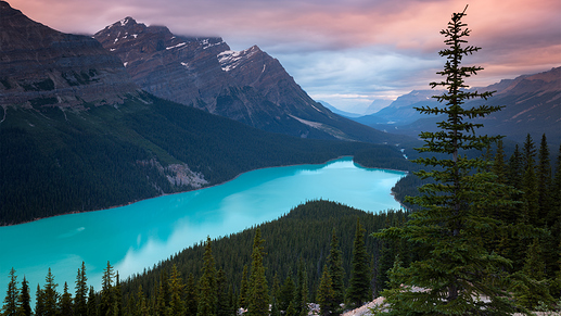 peyto-lake-canada-mountains-4k-tj