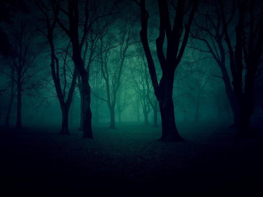 dark_park_by_f3rd4-d37f86j